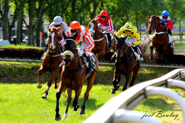 Hippodrome Nantes - Course d'obstacle